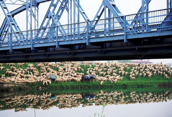 blue bridge - ca 1988