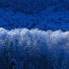6_inverno.jpg